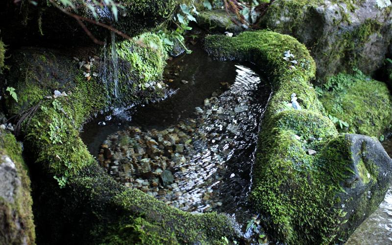 Hacoaと一緒に訪れたい、福井のおすすめスポット